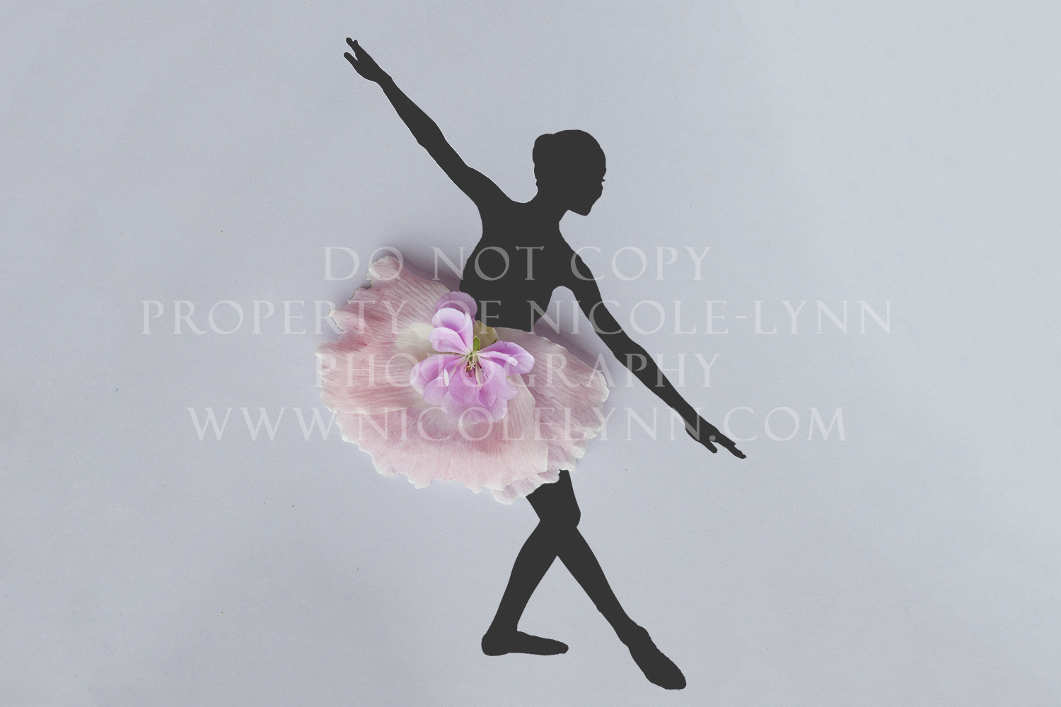 Traditional Ballerina from Floral Dancer Series | Ballerina_3_-_Watermark.jpg